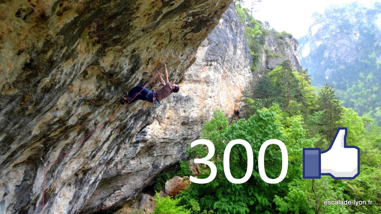 300-likes-escalade-lyon