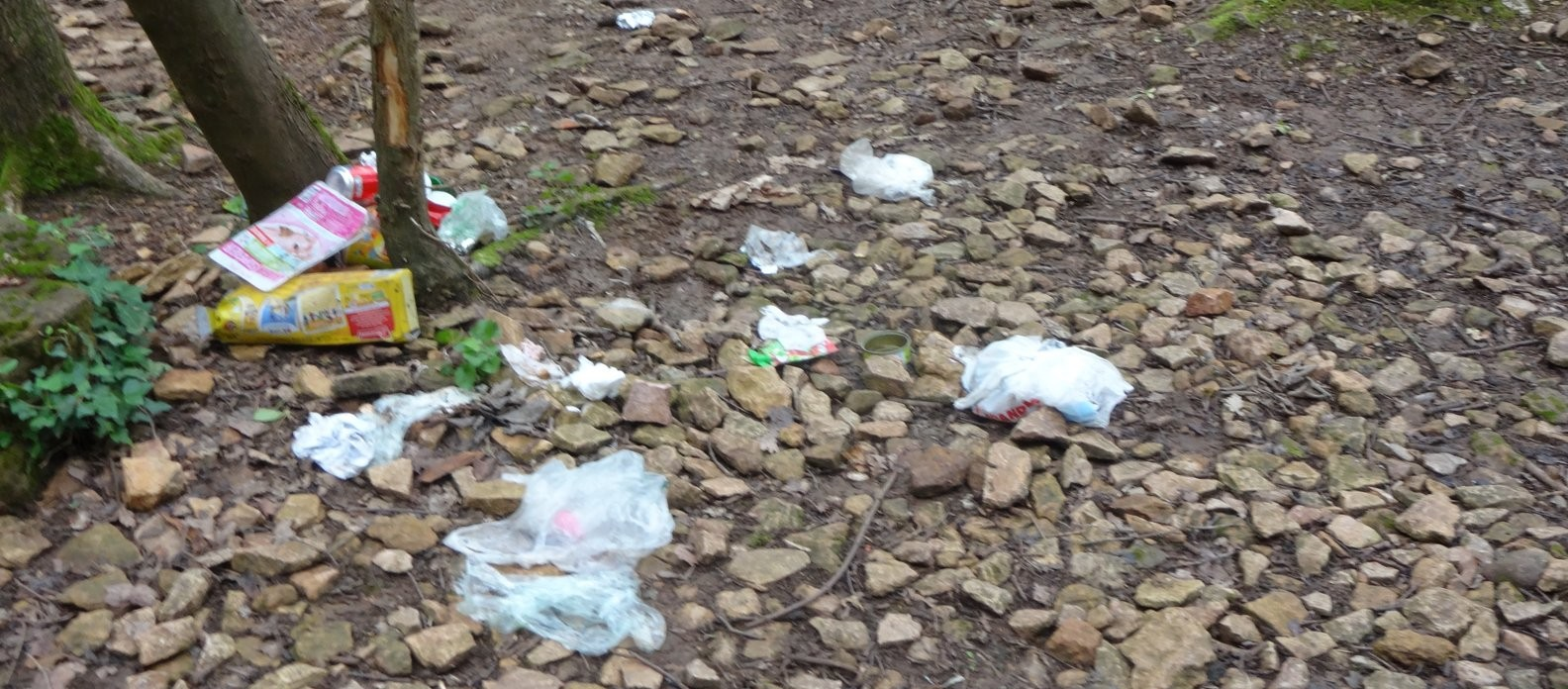 déchets-curis