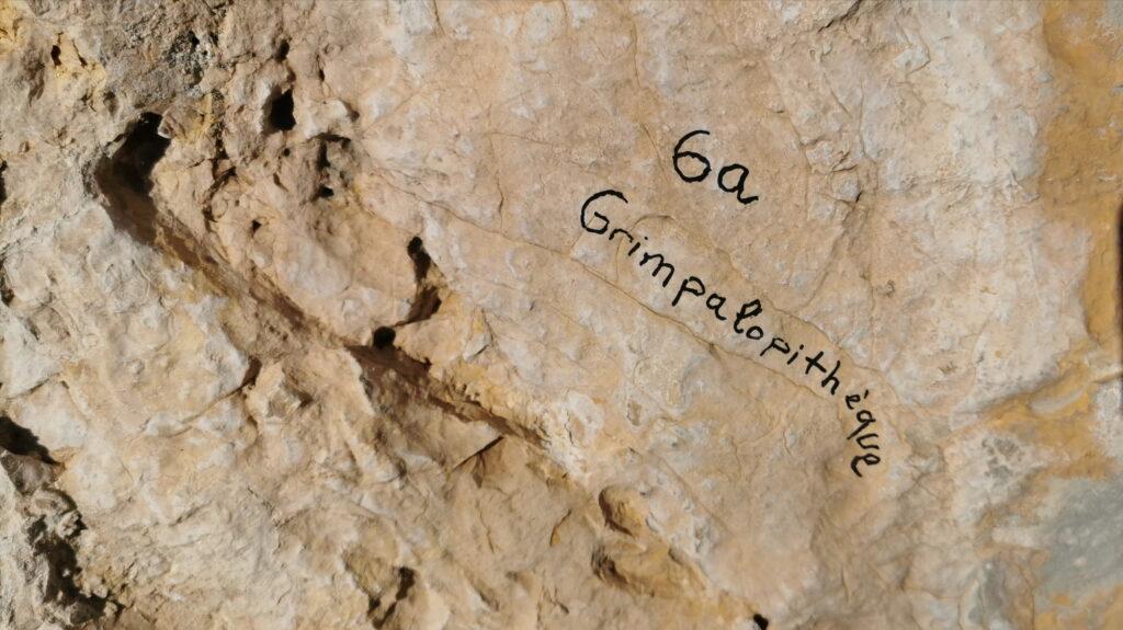 grimpalopithèque-6a